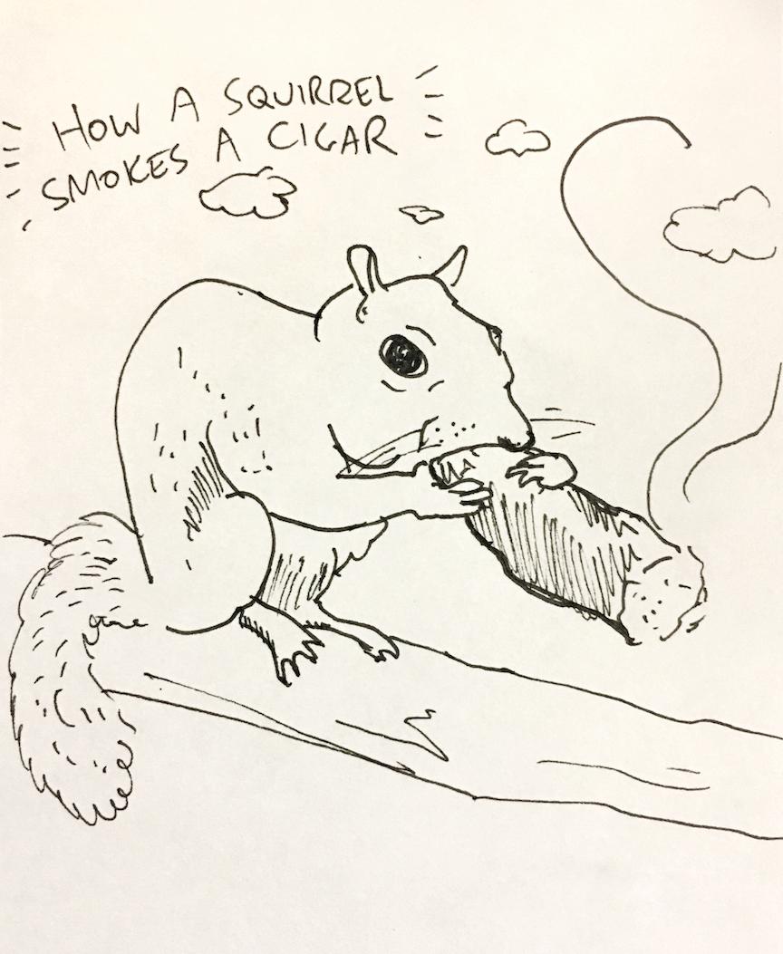 """A squirrel smoking a cigar"""