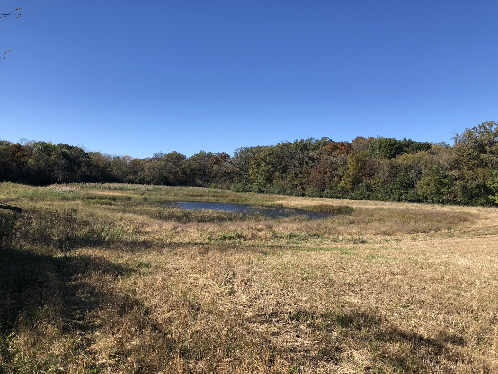 38 Acres - NE of Route 120 on Rand Rd.