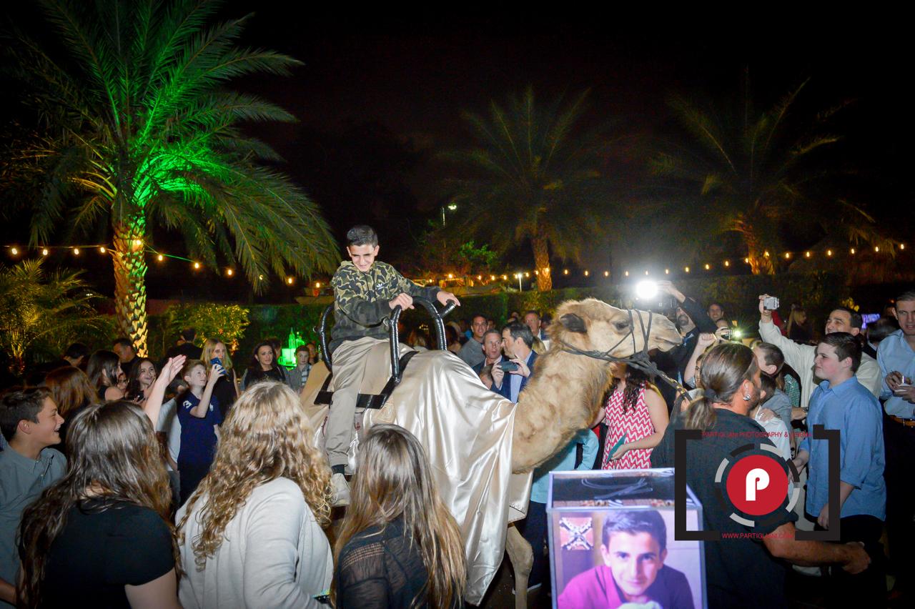 Camel Ride at Lavan Event Venue Fort Lauderdale