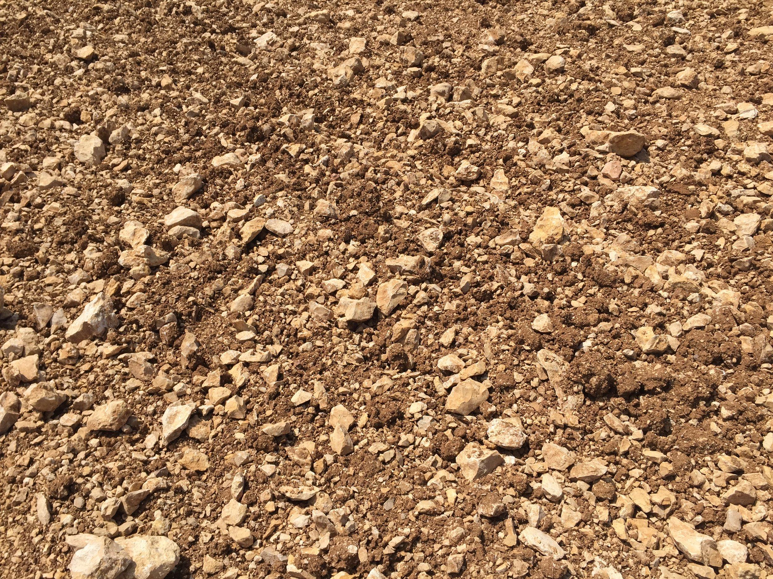 Cahors Plateau Close-up