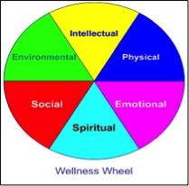 Figure 1. The Wellness Wheel: Conceptual model of holistic wellness