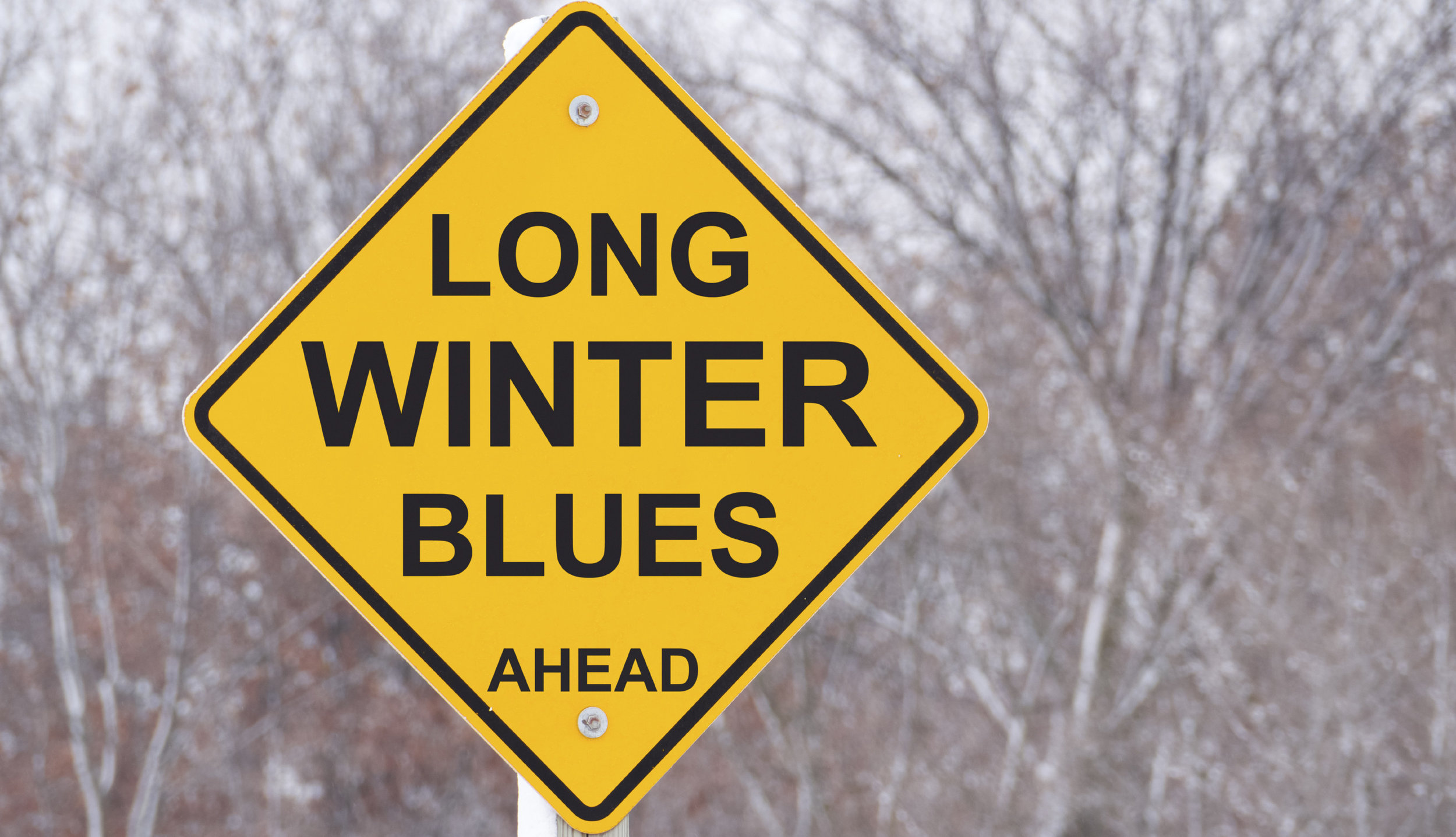 winter-blues-sign-e1422984004407.jpg