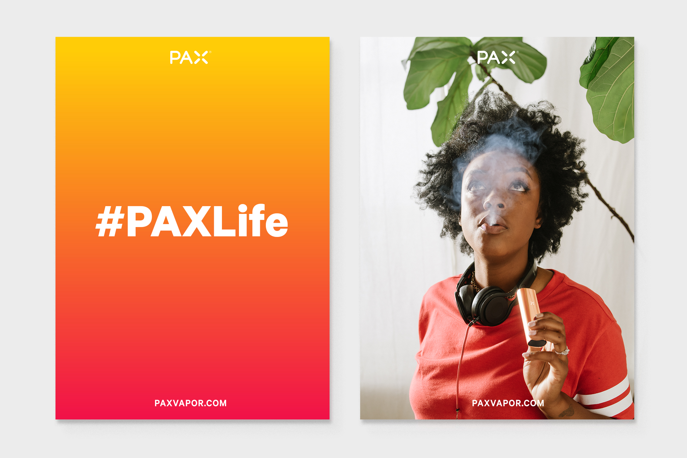 PAXLIfe2.jpg