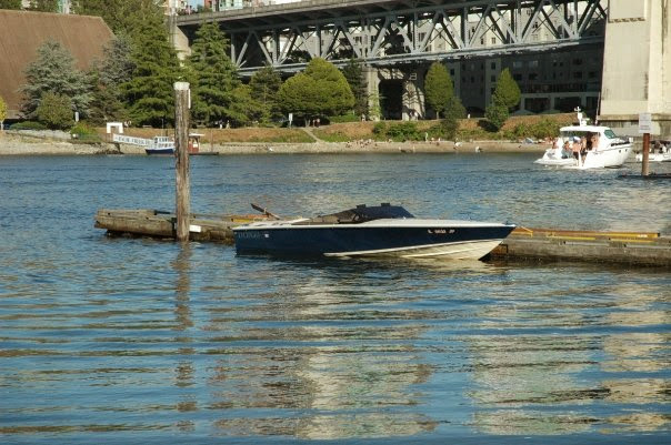 22 Donzi Classic - Navy and honey 22 Classic. Great looking boat but the narrow, deep rounded keel is limited compared to modern designs. They need big power to go fast and big power makes them handle poorly.