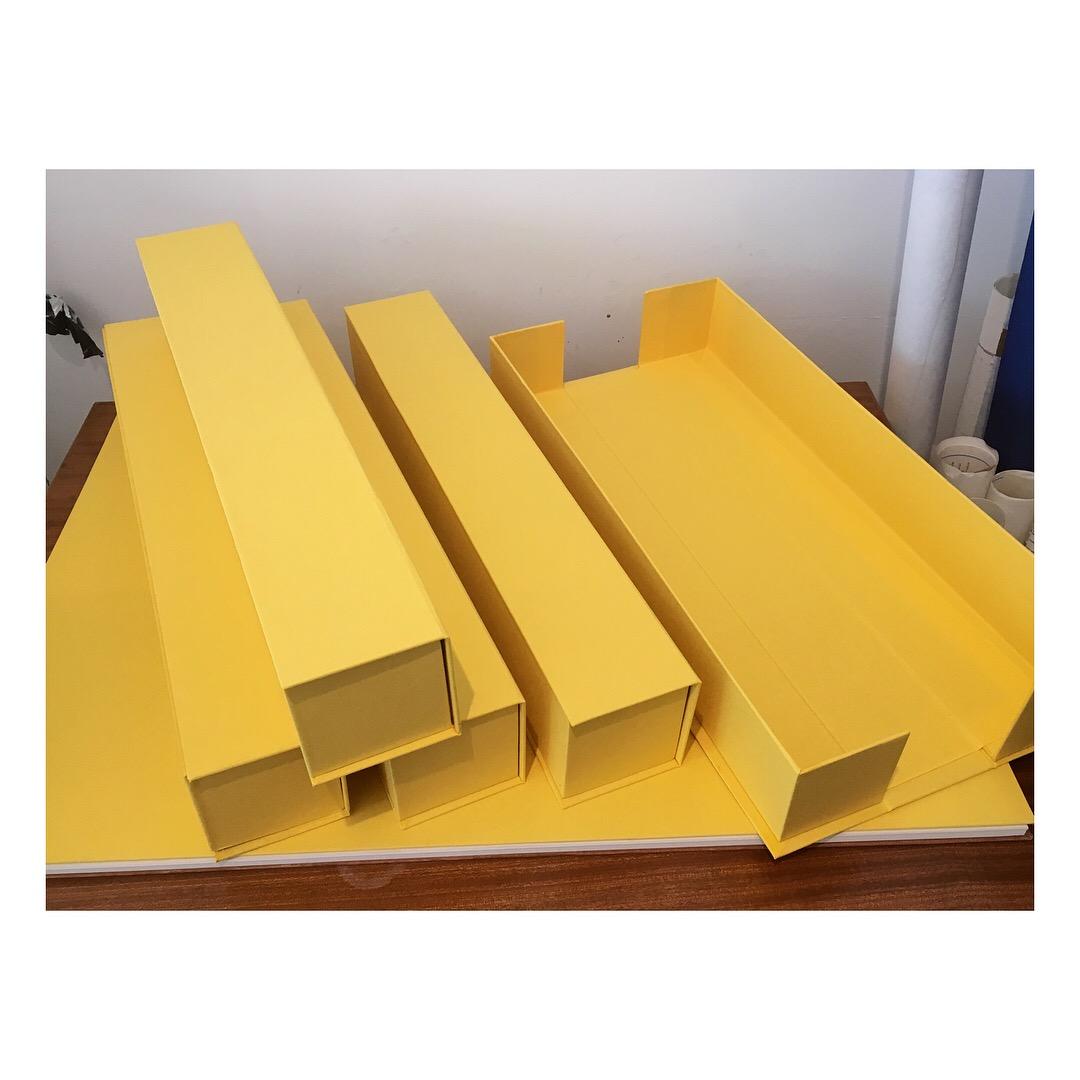 finsed boxes 100000.jpg