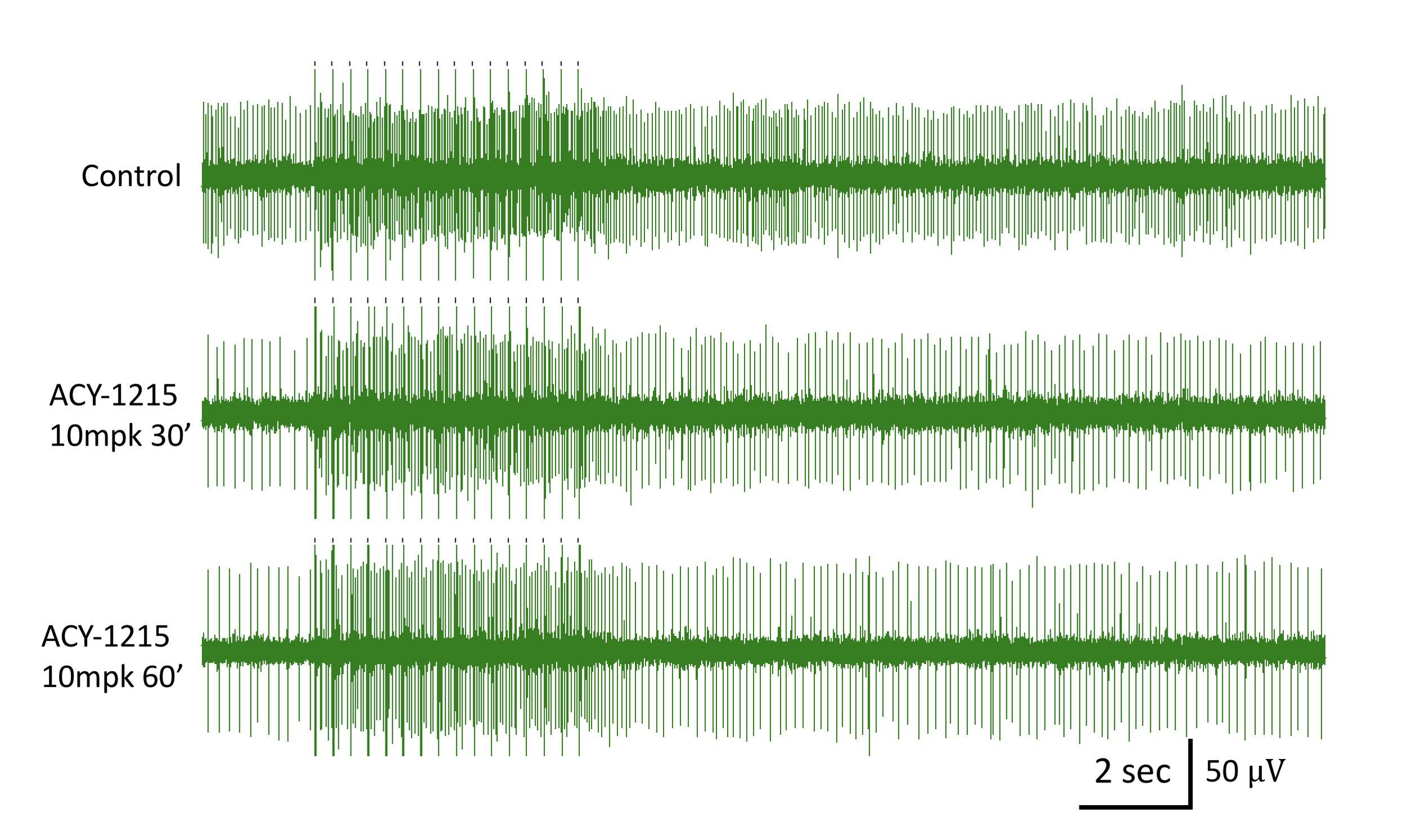 green-waves.jpg