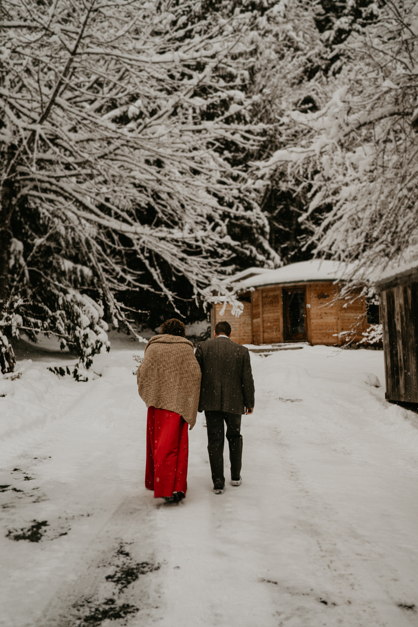 Storm King Cabin Wolf mount rainier paradise romantic snow