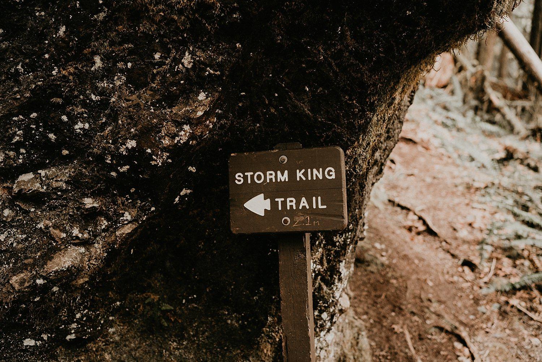 Lake-Crescent-Mount-Storm-King-Hiking-Adventure-Engagement-Seattle-Wedding-Photographer_0057.jpg