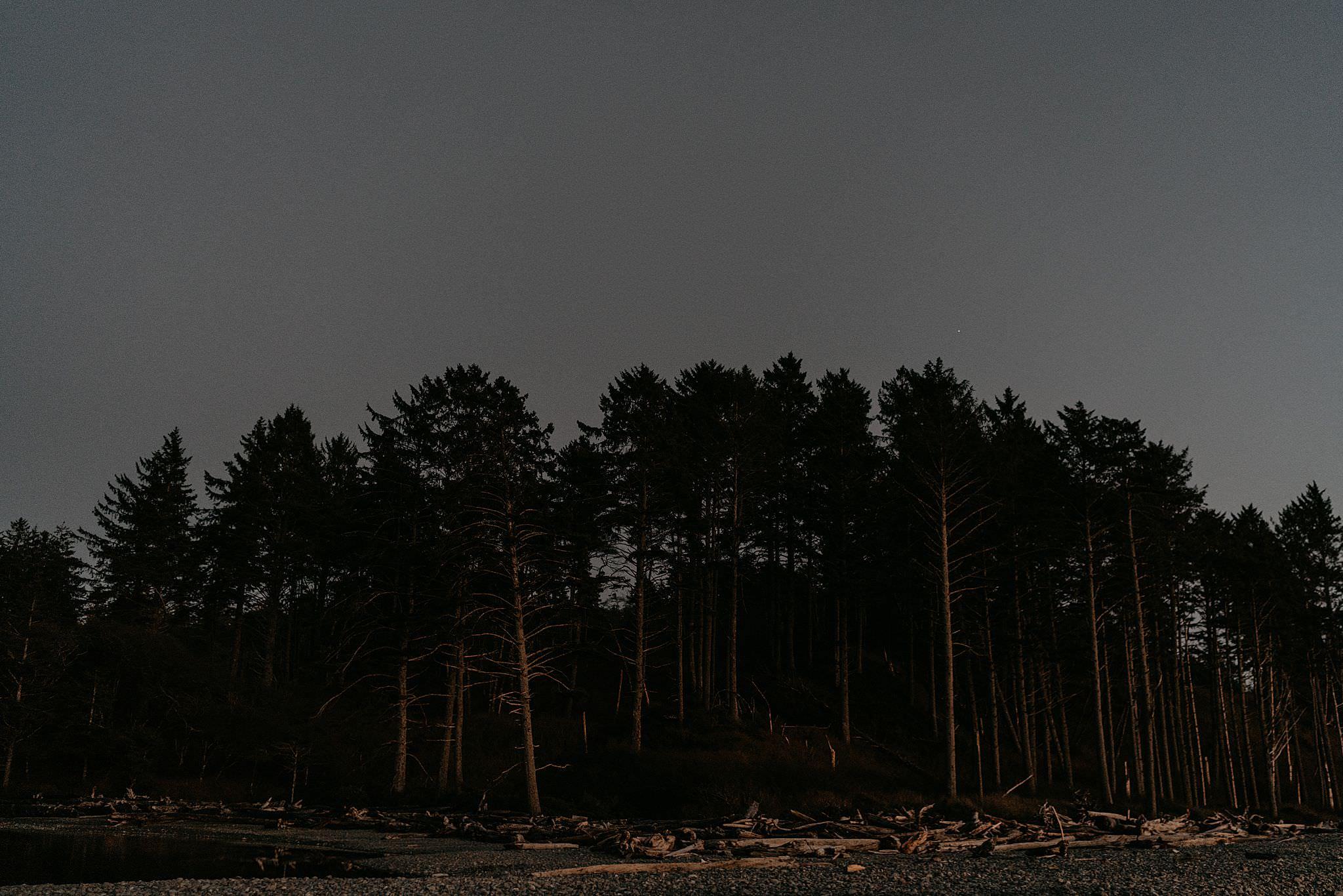 ruby-beach-elopement-olympic-national-park_0090.jpg