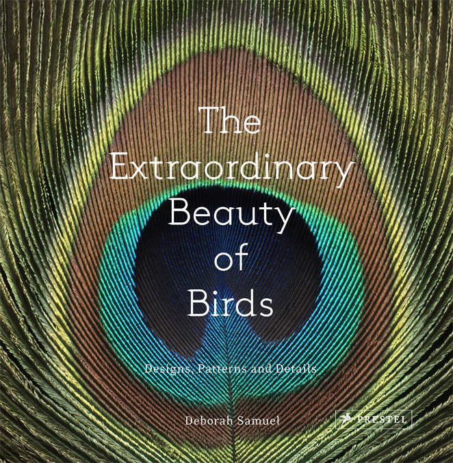 The Extraordinary Beauty of Birds Cover.jpg