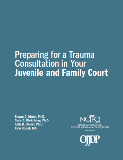 Co-authored NCJFCJ's guide that outlines what courts need to know to carry out their work in trauma-informed ways. Click on cover to check out guide.