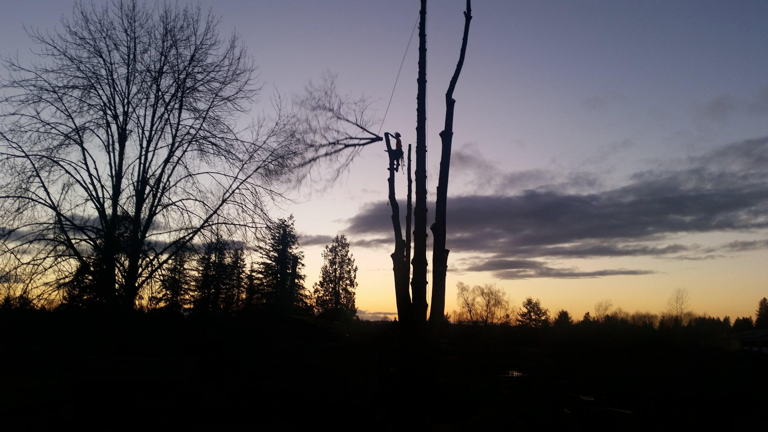 sunset top.jpg