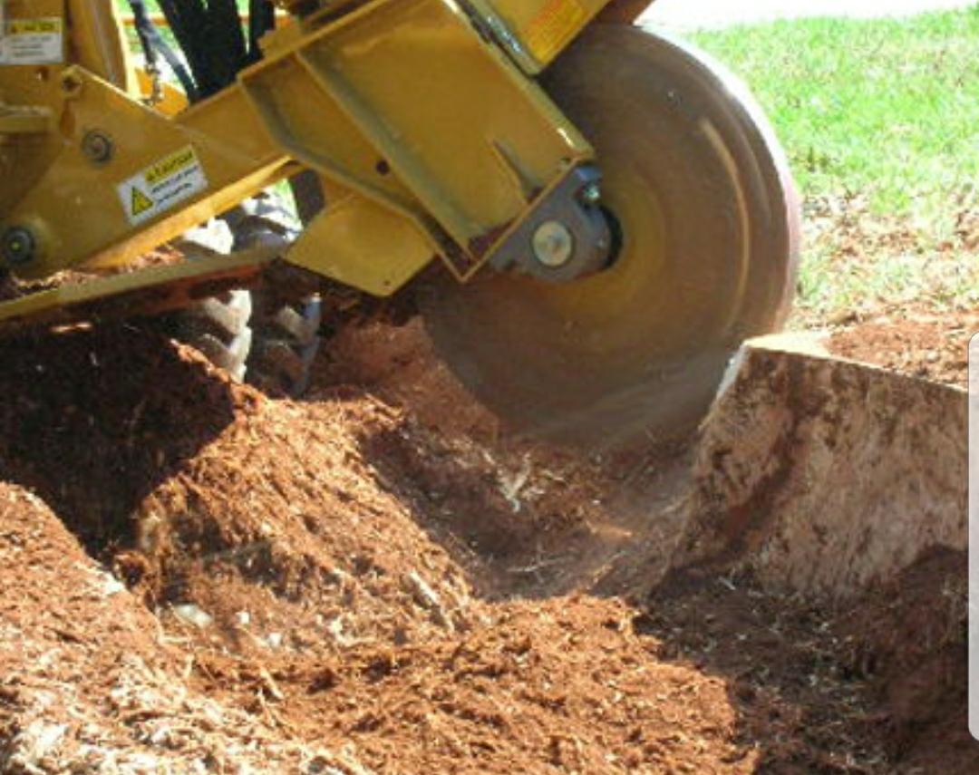 Stump Grinding. - Remove stumps with minimal disturbance to the landscape.
