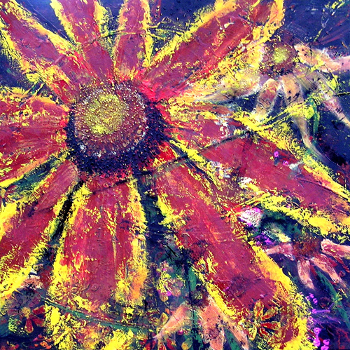 "Gaillardia's Close Up <br> 36""x36"" Acrylic on Canvas"