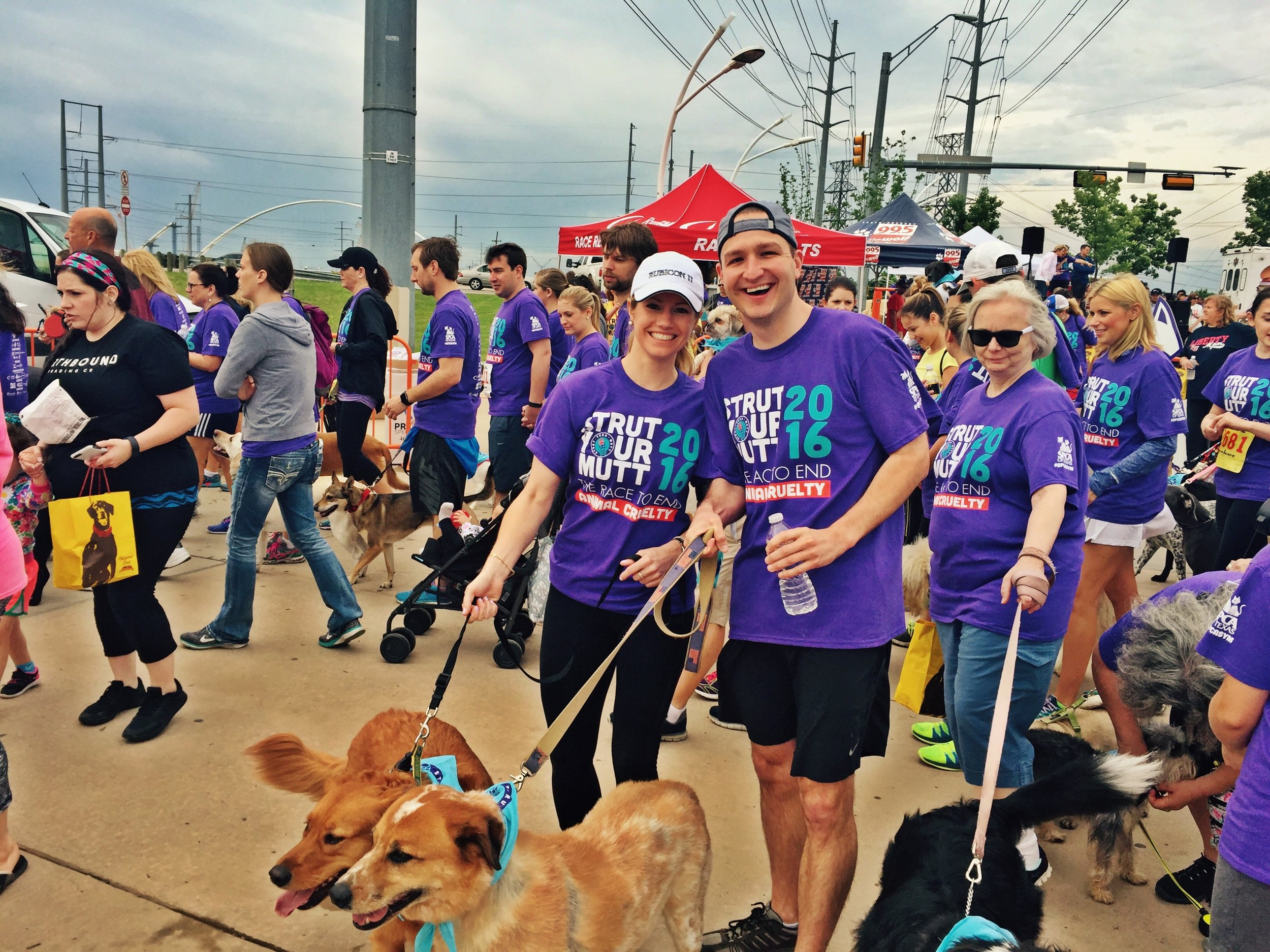 Annual 'Strut your Mutt' 5k to help end animal cruelty
