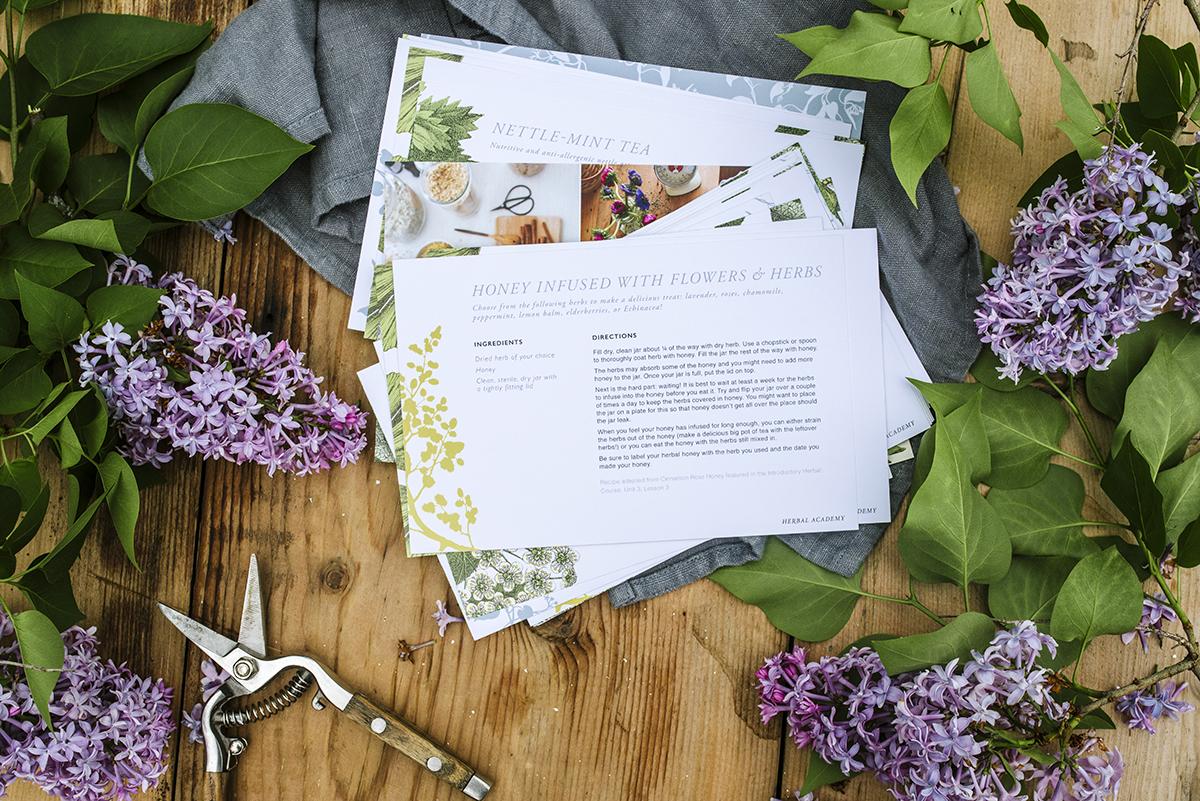 Back to school photos - Herbal Academy recipe cards.jpg