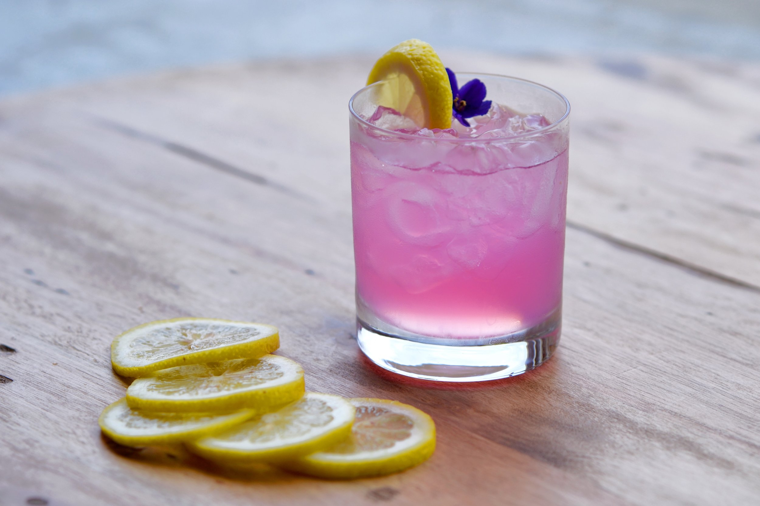 Violet Gin FIzz- Photo by Sarah Murphy