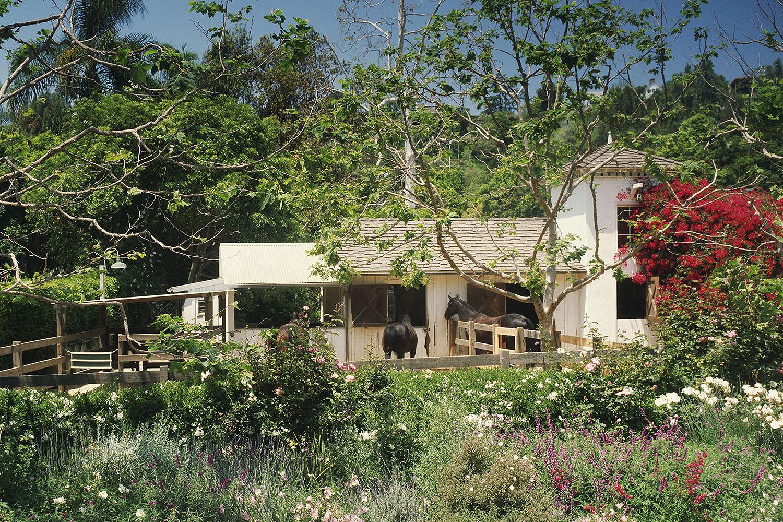 ranch05.jpg