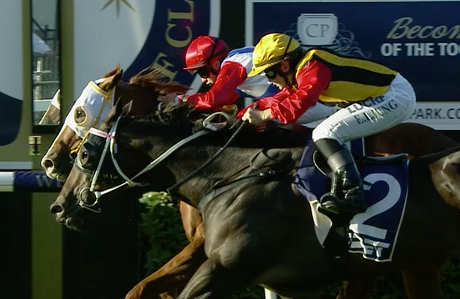 Lost by a nose! Closest of 2nds ... that cost us well over $300 return!