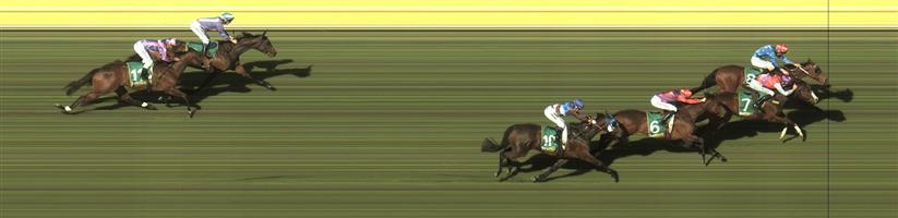 Kyneton R7 #8 Zelsignoret @ $2.90 2.5 UNITS WIN   🏆🏆🏆🏆🏆Result :  1st  at SP $2.80, Best Tote of $3.10, Betfair at $3.04.