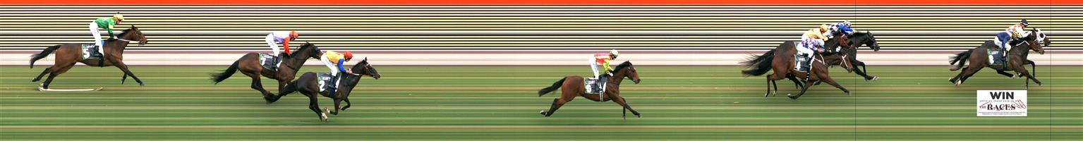 MORPHETTVILLE Race 5 No. 8 The Gatting Ball @ $7.50 0.77 UNIT WIN  ↗️ Result :  2nd by a nose  at  SP $8.50