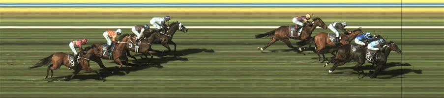 🏆🏆🏆 BENDIGO R6 #10 Ringerdingding @ $2 2.5 UNITS WIN   Result :  1st  at SP $1.90, Best Tote of $2.00, Betfair at $1.92
