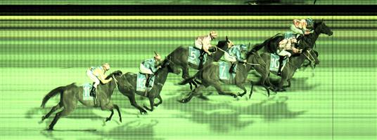 Result : Unplaced at SP $6.50. Late move to qualify as official selection. Wide with cover throughout, presented on the turn and whacked away to the line without ever being a real threat to the winner. Outcome -0.91 Units.