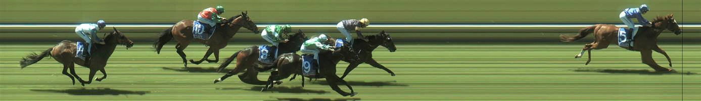 Bendigo Race 2 No.10 Veloucher @ $16 - unlikely price   Result:  Non Qualifier - Unplaced at SP $13.00