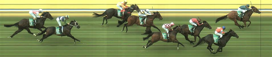 Bendigo Race 10 No.11 Akkadian @ $7.50 (0.84 UNIT WIN) - watch price   Result : 2nd at SP $5.00. Good market support. Ran on from the back though unable to run down the winner who gave a late kick. Good run considering it was hard to make ground from the back for most of the day. Outcome -0.84 Units.