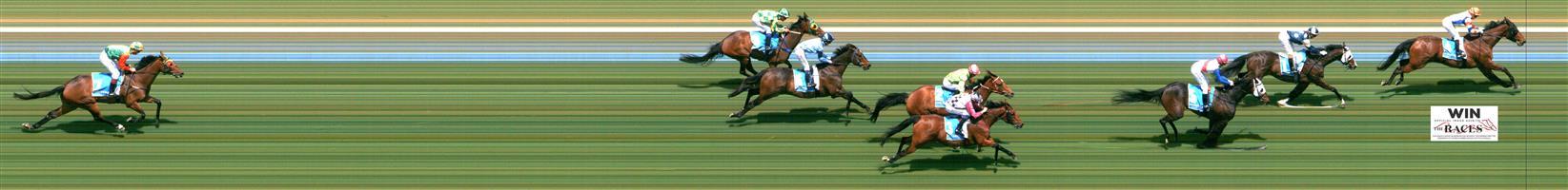 ↗️Morphettville Race 3 No.8 Pelonomena @ $8 (0.72 UNIT WIN) (watch price)   Result : Non Qualifier - Unplaced at SP $17.00
