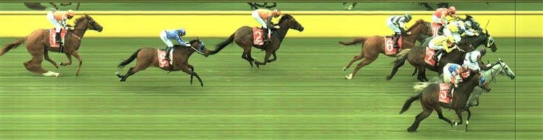 Mornington Race 4 No.7 Periscope @ $1.70 (2.5 UNITS WIN)   Result:  Unplaced at SP $1.40. Came nicely into the race from just before the turn but didn't have the acceleration to finish it off. Was a blanket finish between first five or six horses. Disappointing for $1.40 shot. Outcome -2.50 Units.