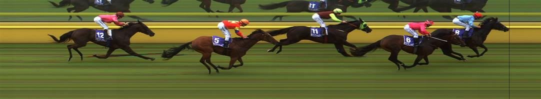 Echuca Race 2 No.5 Malawi Gold @ $9, watch price   Result : 4th at SP $5.00. From the back was widest on the turn and at about the 200m mark, you thought Malwai was a hope but that when he peaked in its run and finished a couple of lengths from the main pack. Outcome -1.25 Units.  Echuca Race 2 No.6 Wild Moon @ $5 (1.25 UNITS WIN)   Result :  2nd  at SP $5.50. Was three wide from just before the turn, who kept on finding though the winner found a gap from the back and stormed home to win on the line. Outcome -1.25 Units.
