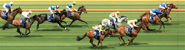 Flemington Race 2 No.5 Lucky For All @ $2.60 (2.5 UNITS WIN)   Result:  Unplaced at SP $3.00. Blocked when looking to make its run at the 400m, eventually found room and hit the line alright, though lost its winning chance when blocked for around 100m or so. Outcome -2.50 Units.  Flemington Race 2 No.8 Pleasuring @ $11 - watch price - potential RewardBet?   Result:  Non Qualifier - Unplaced at SP $12.00  Flemington Race 2 No.11 Top Prospect @ $18 - watch price - Potential RewardBet?   Result:  Non Qualifier - 1st at SP $11.00, Best Tote $11.30, Betfair $13.17.