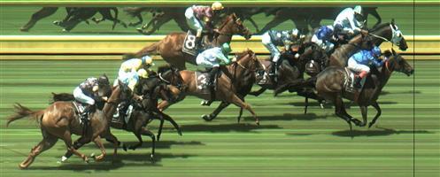 Sandown Race 4 No.3 Kiwia @ $9 - watch price   Result : Non Qualifier - Unplaced at SP $10.00
