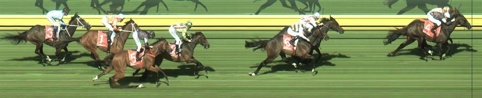 Sandown Race 8 No.6 Lord Fandango @ $7.50 (0.77 UNIT WIN)   Result :  4th  at SP $8.00. Straightened up in the clear from 5th, six lengths behind the leaders and kept going nicely in a race dominated by the front runners. Outcome -0.77 Units