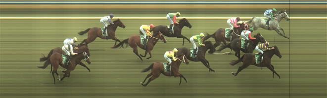 🏆🏆🏆🏆🏆🏆 Bendigo Race 9 No.9 Cash Affair @ $14 - price unlikely, however with John Allen riding …. if he can get across from the wide barrier into a good position - could be a value E/W bet. Not official, but we will be looking at that option.   Result :  1st  at SP $10.00, Best Tote $10.60, Betfair $12.50. Each way players Super Tab $2.90 and Betfair $3.28. Shortened to $7.50 before easing out very late. Came from next to last, took rails run, shortest way home, while most other runners took the middle of the track and hit the lead 100m out and held on for victory. This became an official play as via our official communications. Outcome +5.71 Units.