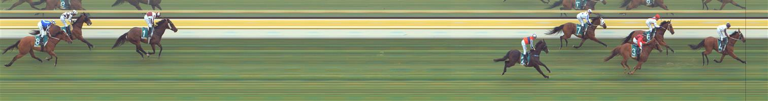 Stawell Race 6 No.8 Sea Of Stars @ $10 - watch price   Result : Non Qualifier - Unplaced at SP $10.00