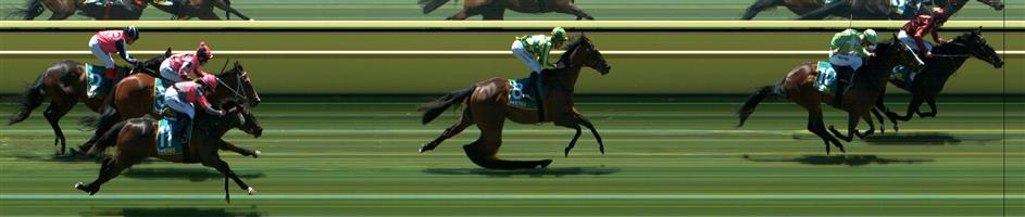 Ararat Race 2 No.2 Freestyler @ $3.90 (1.73 UNITS WIN)   Result:  Unplaced at SP $4.20. After being asked for an effort from the turn, found little and quickly lost touch with the leaders and winning group after sitting fourth. Outcome -1.73 Units.