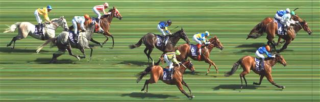 Flemington Race 7 No.5 Holy Blade @ $19   Result:  Non Qualifier – Unplaced at SP $13.00  Flemington Race 7 No.6 Native Soldier @ $4.60 (1.39 UNITS WIN)   Result: 4th  at SP $4.80. One of the widest runners, despite being under pressure, kept on running and tired late to finish just out of the placings. Outcome -1.39 Units.