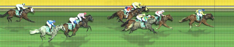 Cranbourne Race 6 No.11 River Jewel @ $2.70 (1.5 UNITS WIN)   Result : 4th at SP $3.70. After settling three wide with cover, presented in the straight to win but just didn't finish off as one would hope. Outcome -1.50 Units.