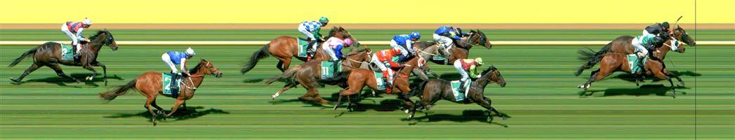 Werribee Race 7 No.9 Cheeky Reward @ $11 - watch price   Result : Non Qualifier - Unplaced at SP $11.00