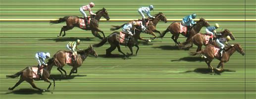 Caulfield Race 4 No.6 Indian Thunder @ $9 - watch price   Result : Non Qualifier - Unplaced at SP $10.00