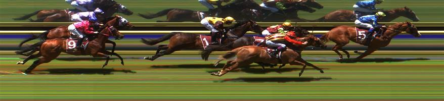 Burrumbeet Race 2 No.4 Rosamond @ 5.50 (1.12 UNITS WIN)   Result:  Unplaced at SP $4.40. Three wide midfield in the run though by the turn Rosamond was struggling and finished at the tail of the field. Outcome -1.12 Units.
