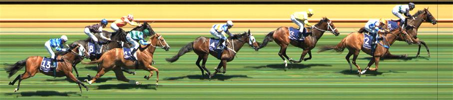 Flemington Race 3 No.8 Converging @ $17 - price unlikely   Result:  Non Qualifier – Unplaced at SP $16.00