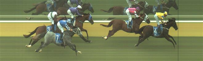 WANGARATTA Race 3 No. 9 Offsett @ $9 - watch price   Result : Unplaced at SP $7.00. Horse fell at the home turn. Outcome –0.84 Units.