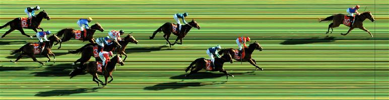 Caulfield Race 6 No.8 Chevaux @ $11 - watch price   Result : Non Qualifier - 4th at SP $14.00