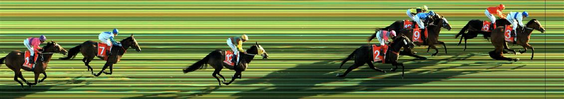 Caulfield Race 8 No.9 Beetobee @ $5 - (1.25 UNITS WIN)   Result : 3rd at SP $8.00. Coming from the back was five + wide on the turn though the winner went past easily while Beetoobee kept running soundly to finish 3rd. Outcome -1.25 Units