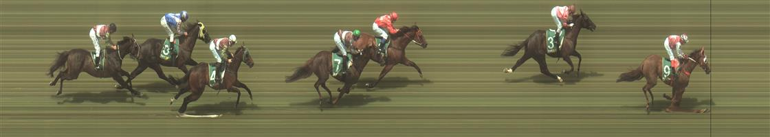 🏆🏆🏆🏆 Geelong Race 3 No.9 Maunahost @ $2.50 (1.5 UNITS WIN)   Result : 1st at SP $2.50, Best Tote $2.60, Betfair $2.85. Settled behind the leaders, straightened up well and finished to well for the field to win by over a length. Outcome +3.75 Units