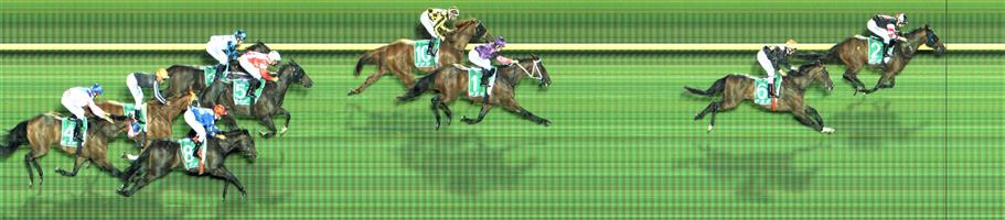 Cranbourne Race 7 No.9 Yulong August @ $9.50 - watch price   Result : Non Qualifier - Unplaced at SP $16.00