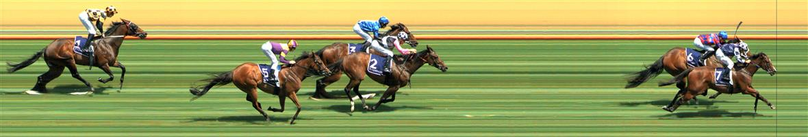Flemington Race 5 No.9 Euroman @ $31 - price unlikely   Result : Non Qualifier - Unplaced at SP $71.00